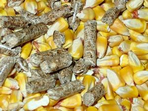 Биотопливо: состояние и перспективы