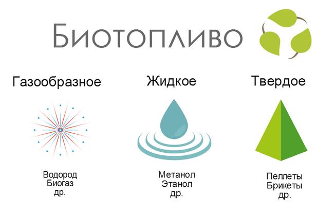 Виды биотоплива